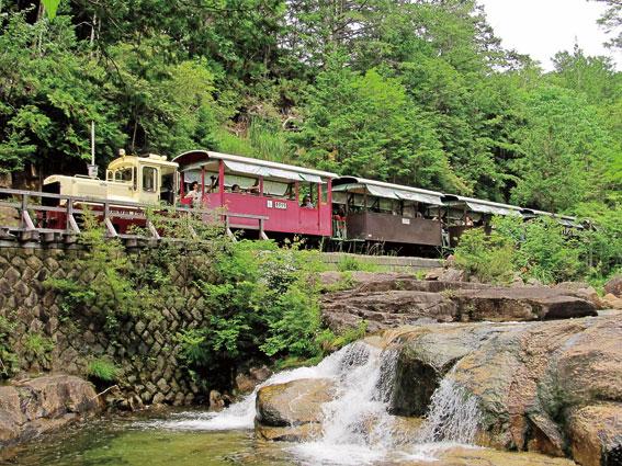 新緑の中を走る赤笹森林鉄道